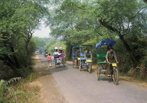 Bharatpur vogelreservaat